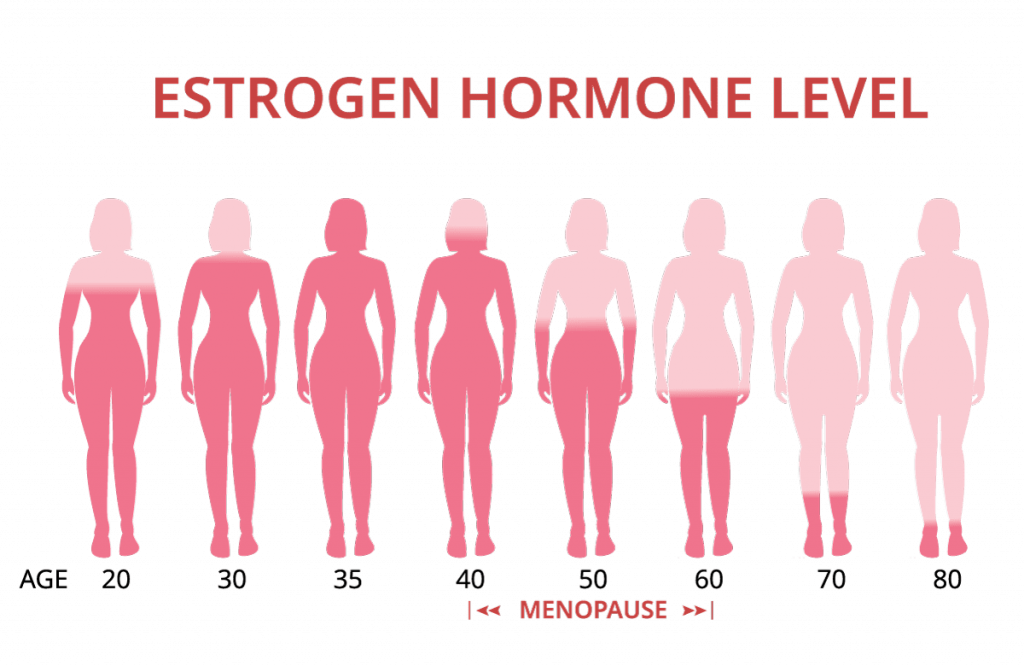 microbiota menopausia